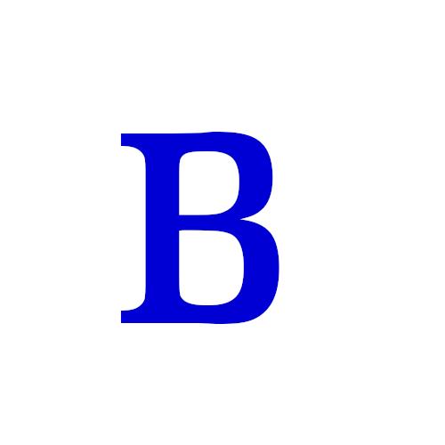 Beiner_logo